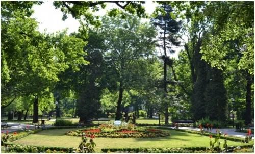 Park Kazimierza Wielkiego Bydgoszcz 1