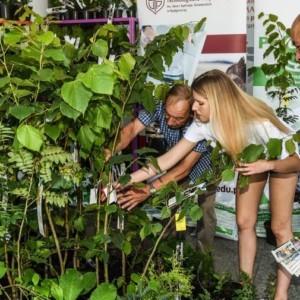 Dwa tysiące sadzonek w zamian za makulaturę i elektrosprzęt rozdane