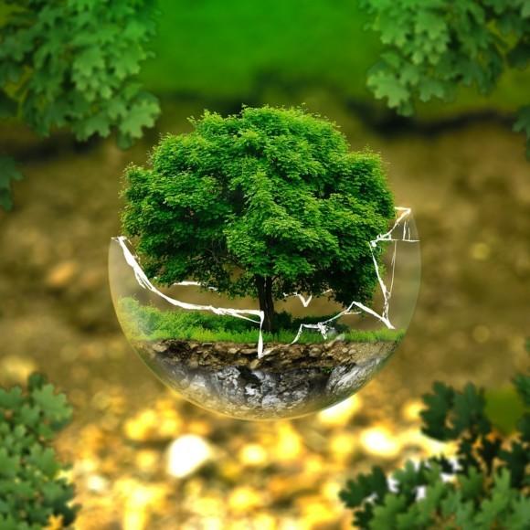 Gala podsumowująca konkursy i akcje ekologiczne