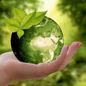 Jak być eko? – proekologicznie na Wyspie Młyńskiej