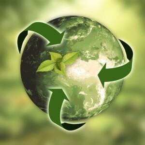 Akcje i konkursy ekologiczne 2020/2021
