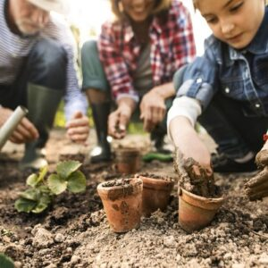 W Fordonie powstanie ogród społeczny