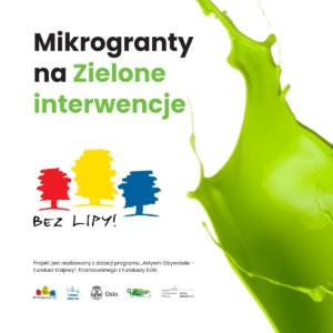 Ruszyły mikrogranty na zielone interwencje [projekt Bez Lipy]
